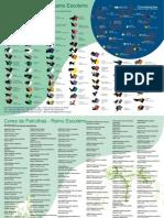 Guia De Especialidades Escoteiras 2015 Pdf