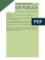 1 OPINION PUBLICA.docx