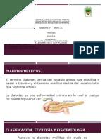 DIABETES MELLITUS, GASTRITIS, ULCERA POR PRESIÓN Y DIARREA