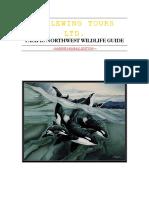 Marine Mammal Guide