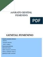 AP. Reproductor Femenino Dra. Ortiz (Recuperado) (Recuperado) (Recuperado)
