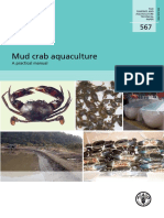 Aquakultur Scylla (Kepiting Bakau)