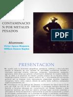 Contaminacion Por Metales Pesados