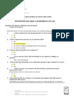 Cuestionario Previo ABAP 4 2015