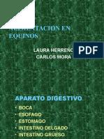ALIMENTACION EN EQUINOS.ppt