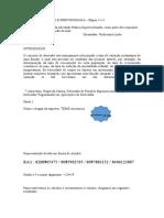Atividade Pratica Supervisionada Calculo II