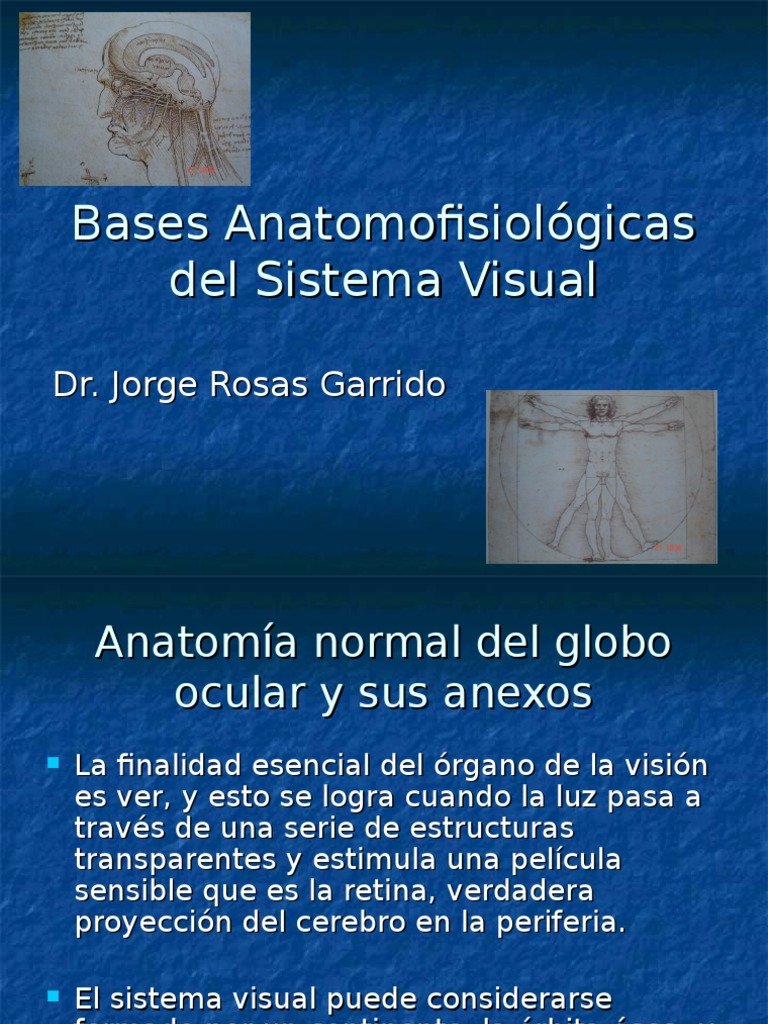 1. Bases Anatomopatologicas Del Sistema Visual 5º 12.03.15