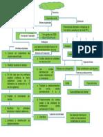 Mapa Conceptual PPC
