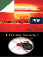 El Escarabajo Bombardero (presentacion)