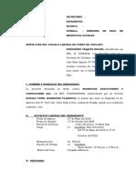 Demanda de Pago de Beneficios Sociales- Miguel Fernandez