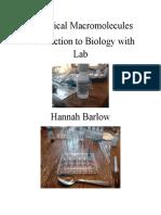 biological macromolecules lab report