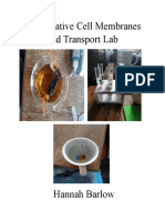 comparative cell membranes and transport lab report