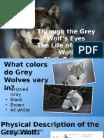 tech lab wolf presentation dgreen