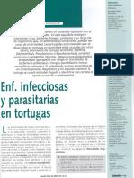 32. Enfermedades Infecciosas y Parasit Rias en Tortugas231