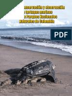 Guia Tortugas