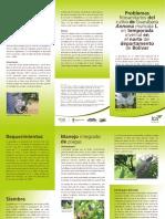 Guanabana.pdf