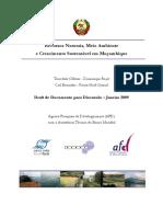 AFD Est. Completo Recursos Naturais Meio Ambiente e Cresci Sust Em Moc 02.2009
