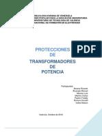 Informe Exp Protecc PDF