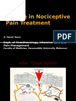 Update in Nociceptive Pain Treatment