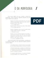 O estudo da Morfologia.pdf