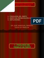 10.5 Fisiolog Parto,Vertice, Deflexiones