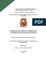 modelo de un informe profesional