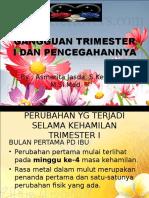 gangguan-trimesterI, 3