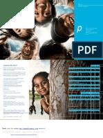 BCP Estructura Funcional