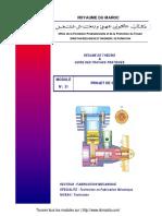 Module_31_Projet_de_synthese-TFM (1).pdf