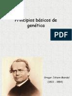 Introduccion a La Genetica