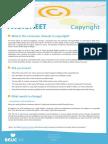 Copyright Factsheet (Beuc)