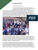 Article   Floristería La Rosaleda (30)