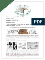 parcial iii.docx