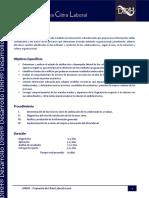 Carta Descriptiva Clima Laboral DIRH