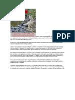 Fuente Más Importante de La Economía Del Ecuador Es La Exportación de Crudo y Derivados Que en Los Últimos 10 Años Ha Oscilado Entre Un 43 y 66