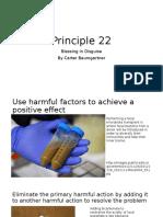 Principle 22
