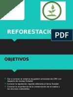 tema n°4 reforestación