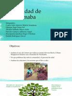 caso 4 comunidad de vilcabamba working together