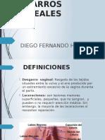 DESGARROS PERINEALES.pptx