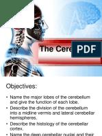 The Cerebellum-8.pdf