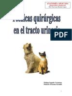 tractourinario.pdf
