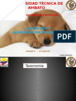 NUTRICION - Bases de Nutricion Canina