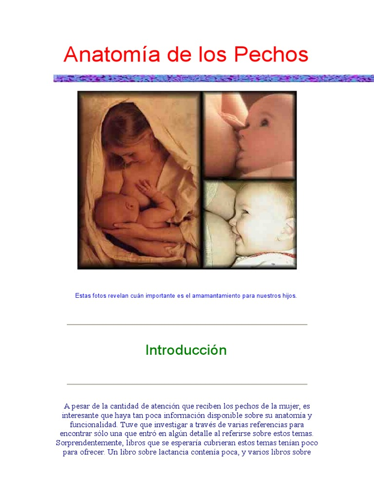 Magnífico Datos Divertidos Acerca De La Anatomía Fotos - Imágenes de ...
