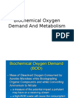BOD+And+Metabolism