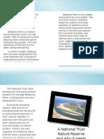 Blakeney Point Leaflet