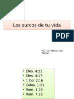 PNL Nueva Al