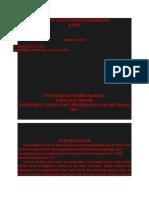 Perencanaan Sistem Informasi E-ktp