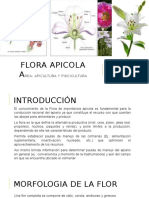 Flora Apicola