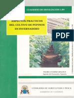 Aspectos Prácticos Del Cultivo de Pepinos en Invernadero