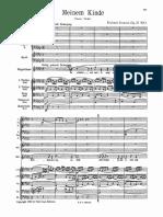 Richard Strauss - Meinem Kinde Orch.